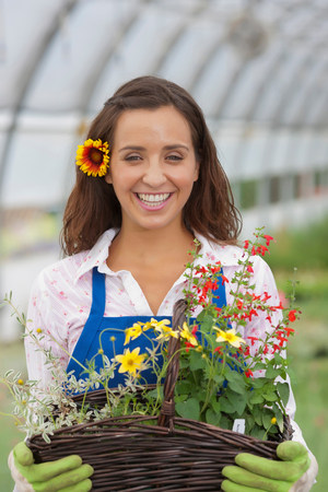 Young woman holding basket of flowers in garden centre,portrait