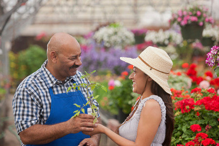 Mature man serving young woman in garden centre,smiling LANG_EVOIMAGES