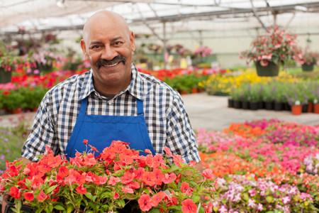 Mature gardener working in garden centre,smiling LANG_EVOIMAGES