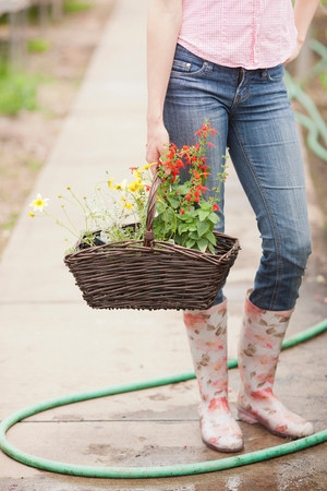 Mid adult woman carrying basket of flowers in garden centre,low section LANG_EVOIMAGES