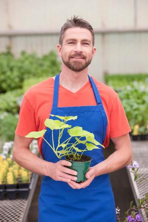 salespeople: Mid adult man holding plant in garden centre,portrait LANG_EVOIMAGES
