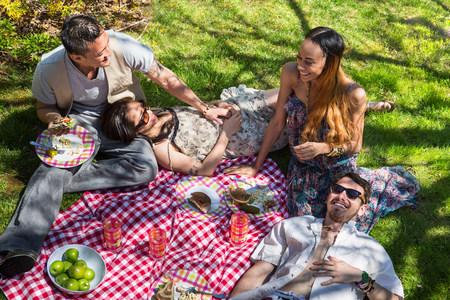 above 18: Four friends having picnic on blanket