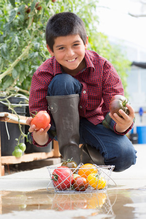 welly: Boy crouching holding ripe tomatoes