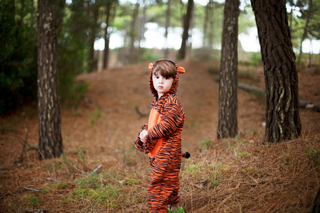 Portrait of male toddler wearing tiger suit alone in woods