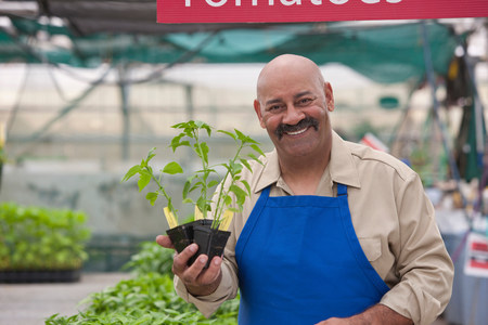Mature man holding pot plant in garden centre,smiling