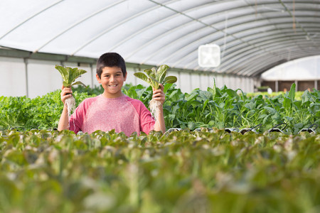Boy holding up plants in nursery,smiling LANG_EVOIMAGES