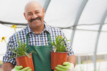 Mature man holding plant pots in garden centre,portrait