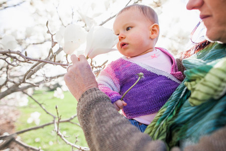 new age: Close up of baby girl and grandmother amongst magnolia blossom