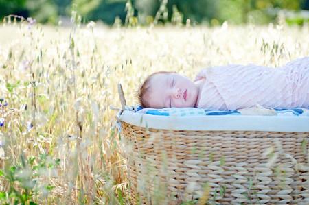 begin: Newborn baby girl sleeping in moses basket in field