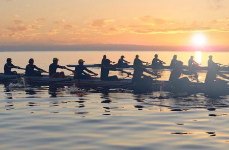 Twelve people rowing at sunset