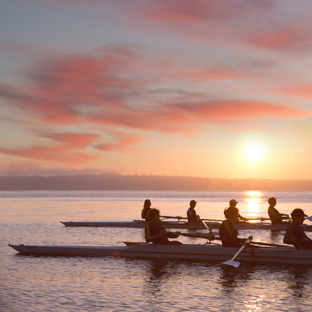 exerting: Seven people rowing at sunset