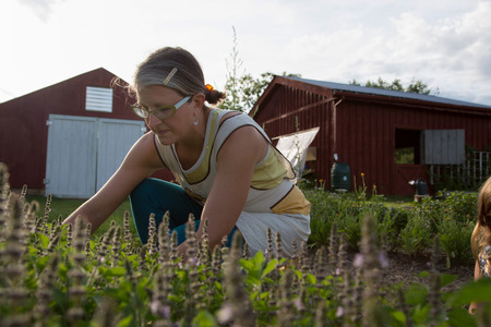 Woman picking plants on family herb farm LANG_EVOIMAGES