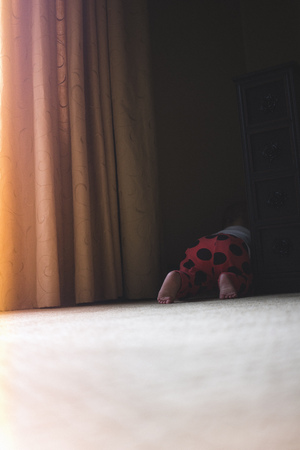 quizzical: Toddler girl crawling behind curtains