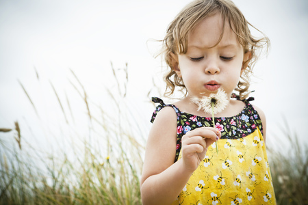 getting out: Portrait of female toddler with dandelion clock