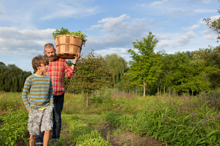 relaciones laborales: Hombre maduro e hijo con cesta de hojas en la granja de hierbas