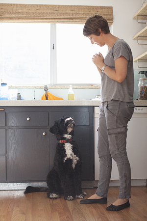 well behaved: Mature woman and her pet dog in kitchen LANG_EVOIMAGES