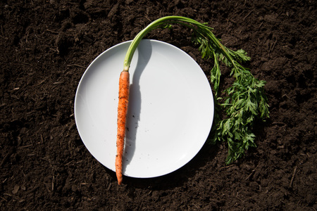 rounded circular: Carrot on plate laid on soil