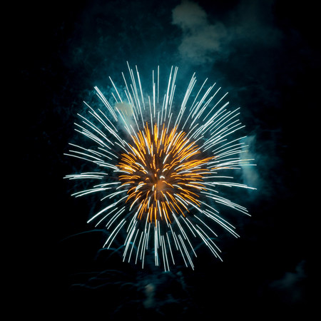 guy fawkes night: Fireworks exploding in night sky