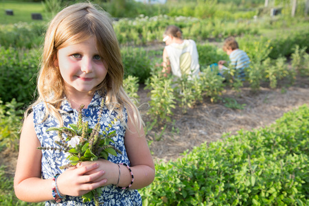 self sufficient: Portrait of girl holding bunch of foliage on herb farm LANG_EVOIMAGES