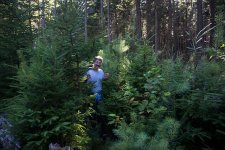 concealment: Mature man walking through forest,Bath,Maine,USA LANG_EVOIMAGES