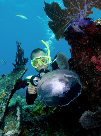 Scuba diver and Moon Jellyfish LANG_EVOIMAGES
