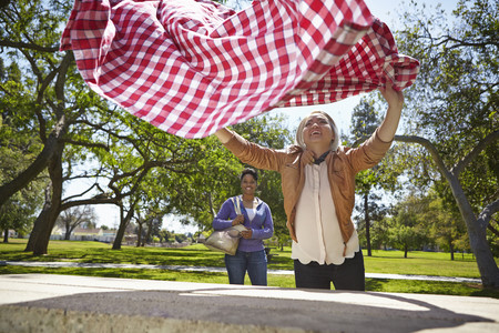 Lesbian couple preparing table cloth for picnic bench in park LANG_EVOIMAGES