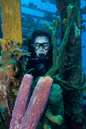 the sunken: Diver on shipwreck