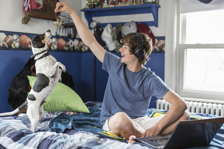 chillout: Teenage boy sitting on bed with laptop computer, playing with dog