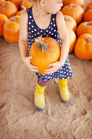 Girl picking pumpkin LANG_EVOIMAGES