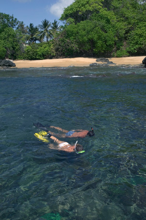 four objects: Couple snorkels near shore