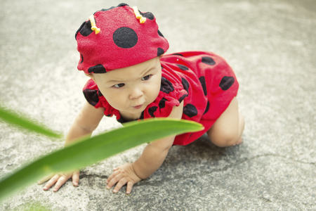 Baby girl wearing ladybird outfit LANG_EVOIMAGES