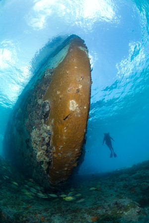 desolacion: Diver and shipwreck LANG_EVOIMAGES