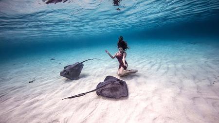 stingrays: Female free diver kneeling near stingrays on seabed