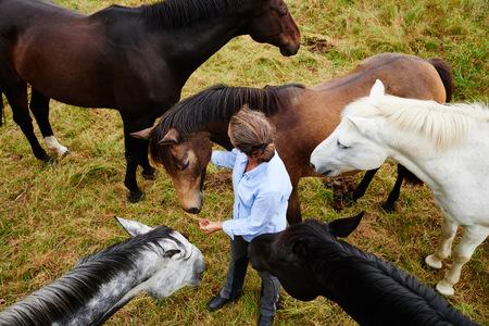 Overhead view of woman amongst five horses in field