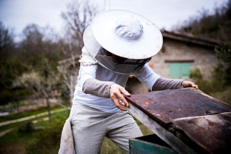 Female beekeeper removing apiary lid in garden LANG_EVOIMAGES