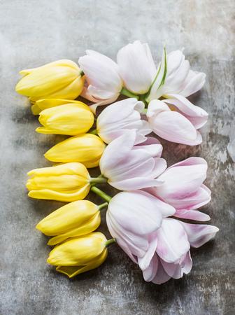 Cut tulip heads
