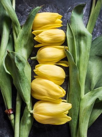 Cut tulip heads and stalks