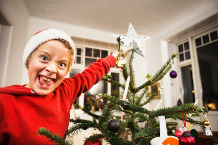 Smiling boy decorating Christmas tree LANG_EVOIMAGES