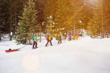 ski walking: Cross country skiers