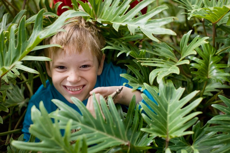 Smiling boy hiding in bush