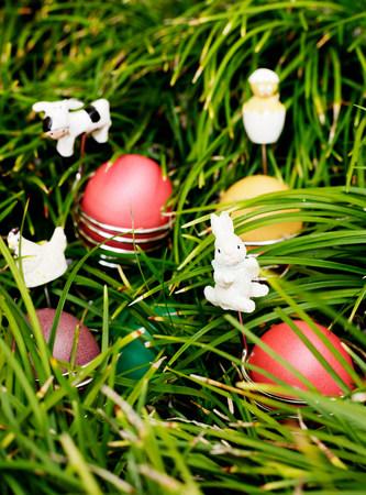 lapin: Oeufs et lapins de Pâques dans l'herbe