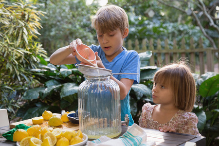 florida citrus: Boy and young sister pouring lemon juice for lemonade at garden table
