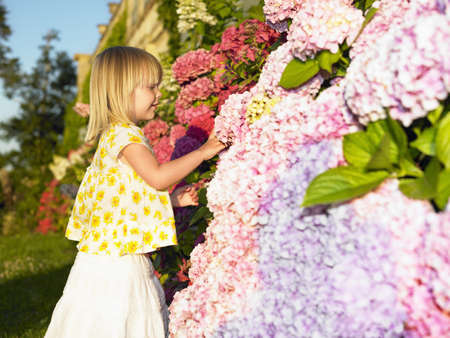 uncomplicated: Girl looking at flowers