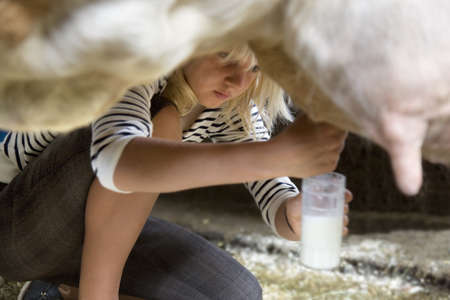 girl milking cow by hand LANG_EVOIMAGES