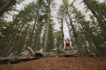 remote controls: Dancer posing on log in forest