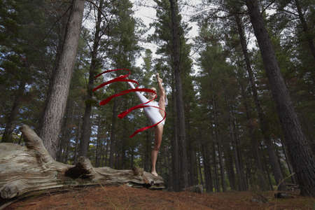 remote controls: Dancer twirling ribbon in forest LANG_EVOIMAGES