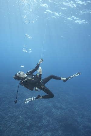 Diver swimming in ocean LANG_EVOIMAGES