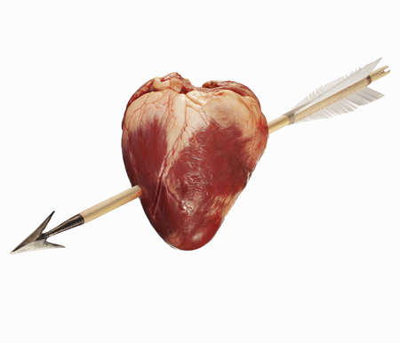 Close up of arrow through pigs heart