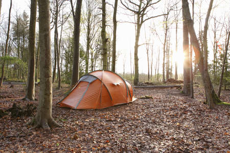 Tent pitched in autumn forest LANG_EVOIMAGES