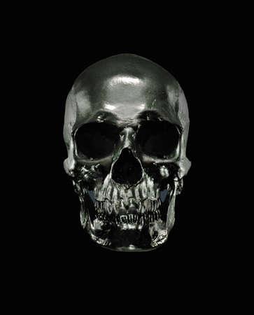 Metal model of human skull
